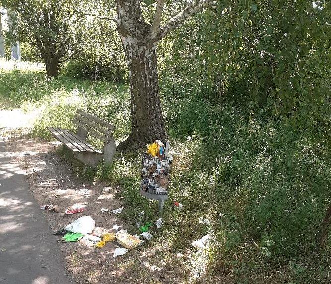 Müllablagerung in Rödermark